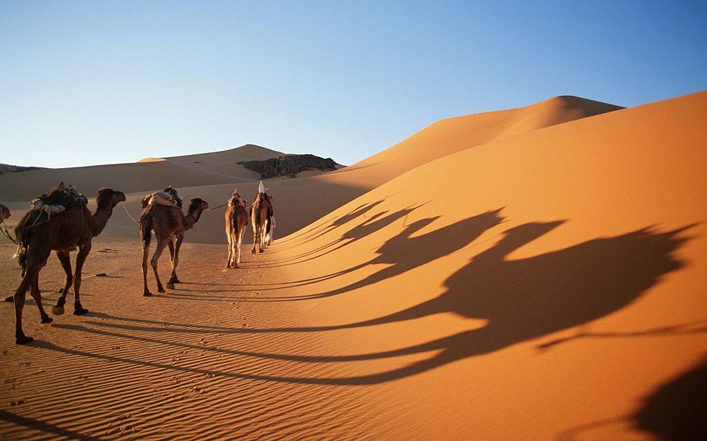 Heatstroke Sahara Desert