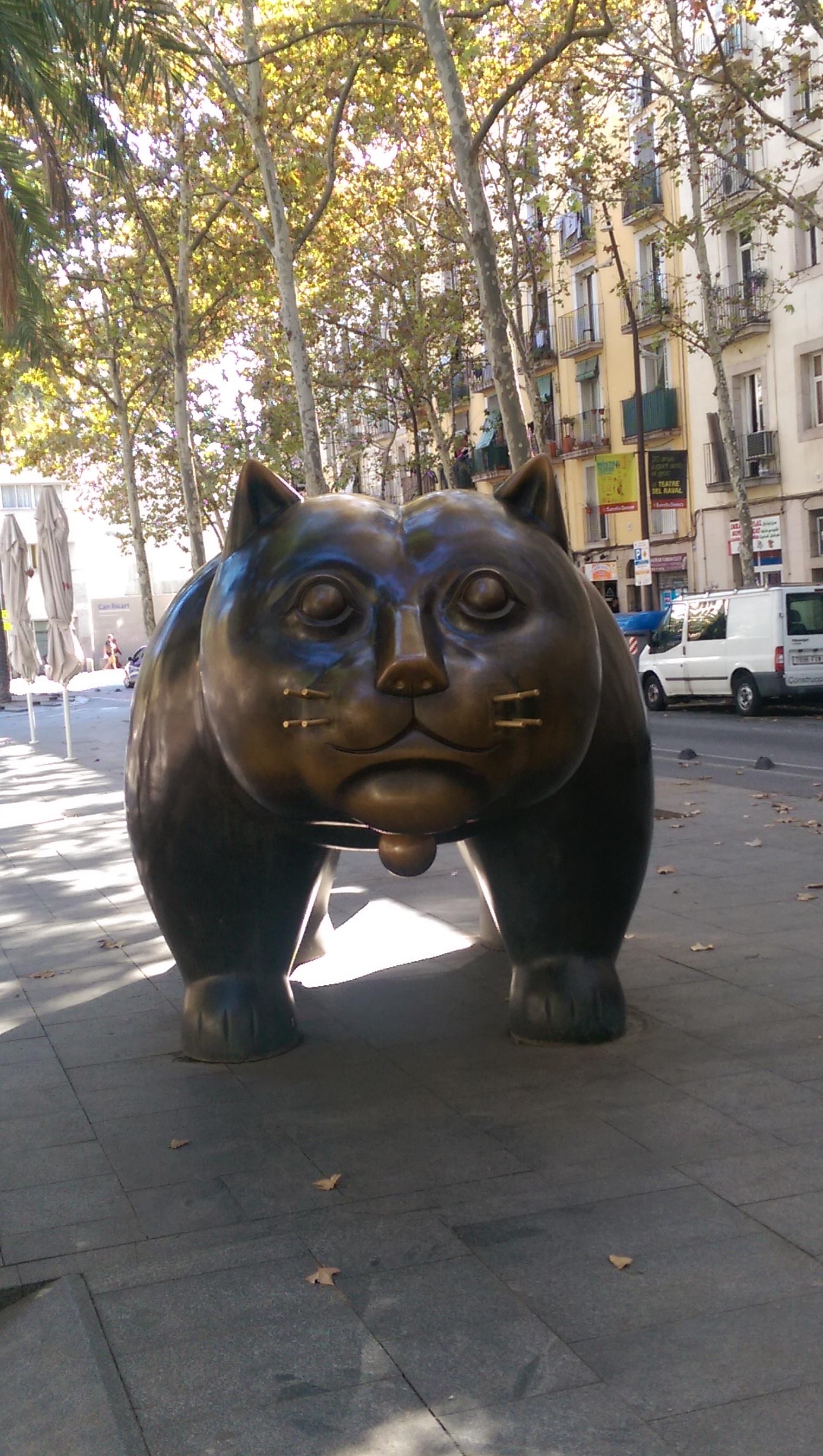 Boater Cat Barcelona
