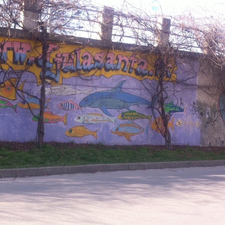 Novi Sad Street Art