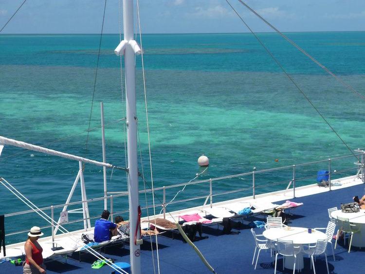 Great Barrier Reef - Hardy Reef