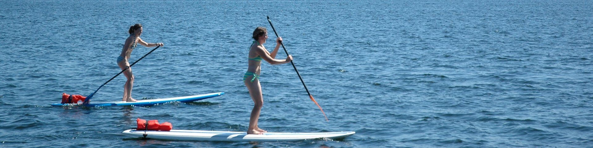 Beginner Paddle Board