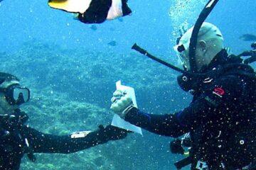 Best Scuba Diving Gloves